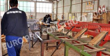 Euro Pro Construct - productie cherestea